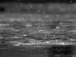 rain and teardrops, black and white