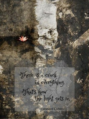 """There's a crack in everything, that's how the light gets in"""